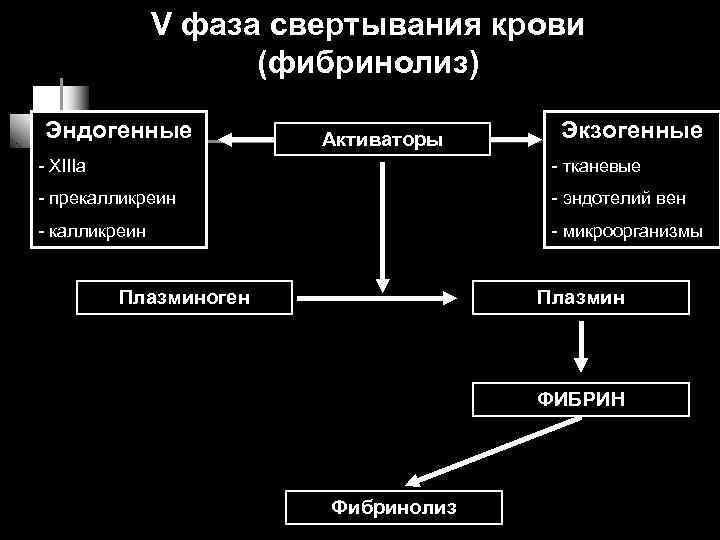 V фаза свертывания крови     (фибринолиз) Эндогенные
