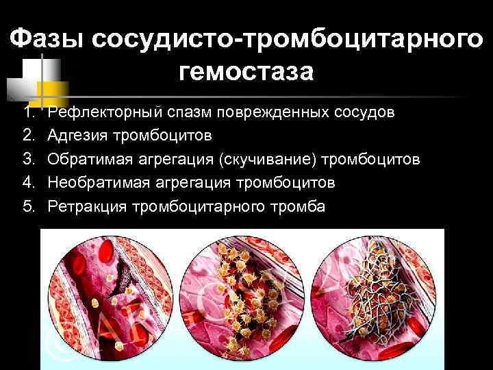 Фазы сосудисто-тромбоцитарного  гемостаза 1.  Рефлекторный спазм поврежденных сосудов 2.  Адгезия тромбоцитов