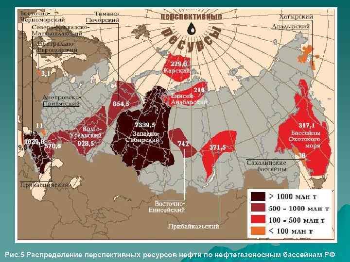 Рис. 5 Распределение перспективных ресурсов нефти по нефтегазоносным бассейнам РФ