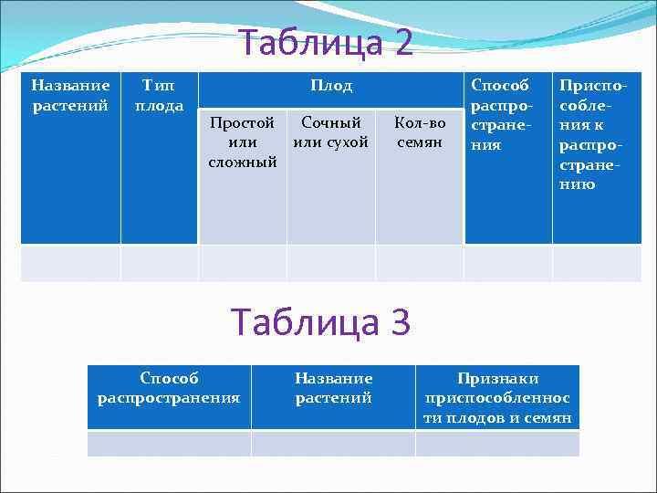 Таблица 2 Название  Тип   Плод