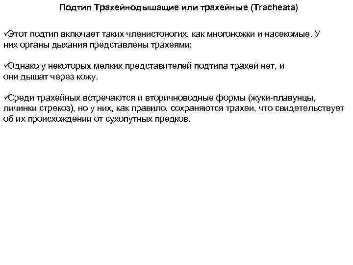 Подтип Трахейнодышащие или трахейные (Tracheata) üЭтот подтип включает таких членистоногих, как