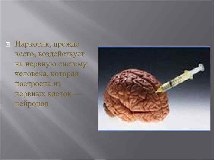 Наркотик, прежде всего, воздействует на нервную систему человека, которая построена из нервных