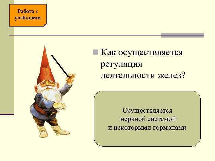 Работа с учебником   n Как осуществляется   регуляция