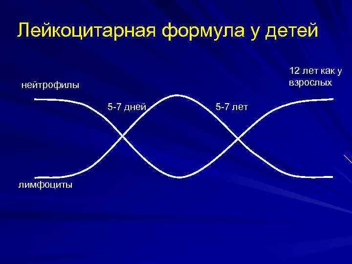 Лейкоцитарная формула у детей      12 лет как у нейтрофилы