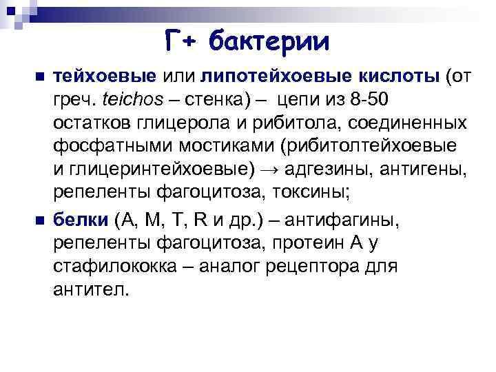 Г+ бактерии n  тейхоевые или липотейхоевые кислоты (от греч.