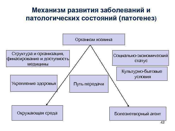 Механизм развития заболеваний и   патологических состояний (патогенез)