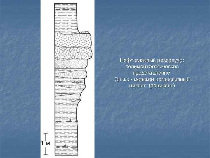 Нефтегазовый резервуар: седиментологическое  представление. Он же - морской регрессивный циклит (рециклит)