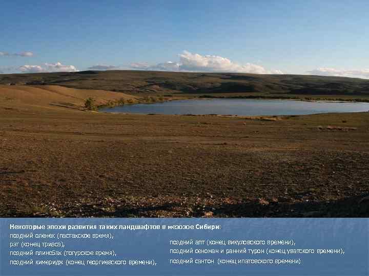 Некоторые эпохи развития таких ландшафтов в мезозое Сибири: поздний оленек (пастахское время), рэт (конец