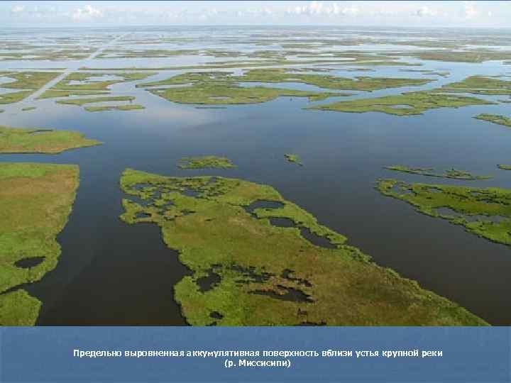 Предельно выровненная аккумулятивная поверхность вблизи устья крупной реки     (р. Миссисипи)