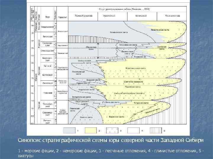 Синопсис стратиграфической схемы юры северной части Западной Сибири 1 - морские фации, 2 -
