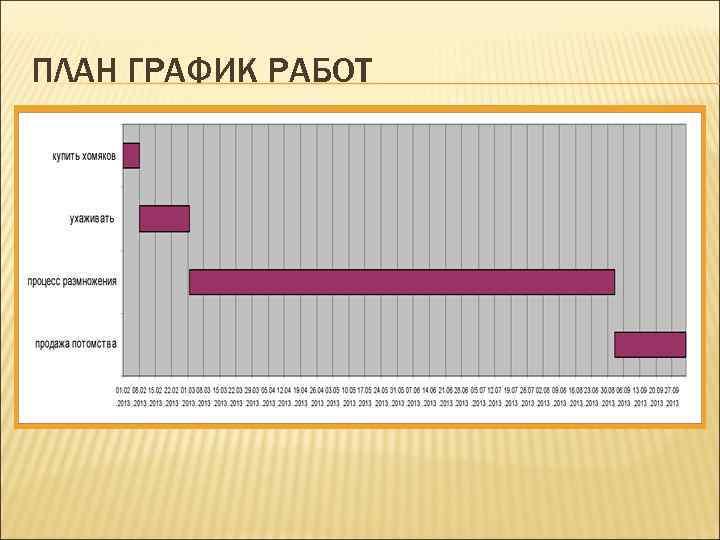 ПЛАН ГРАФИК РАБОТ