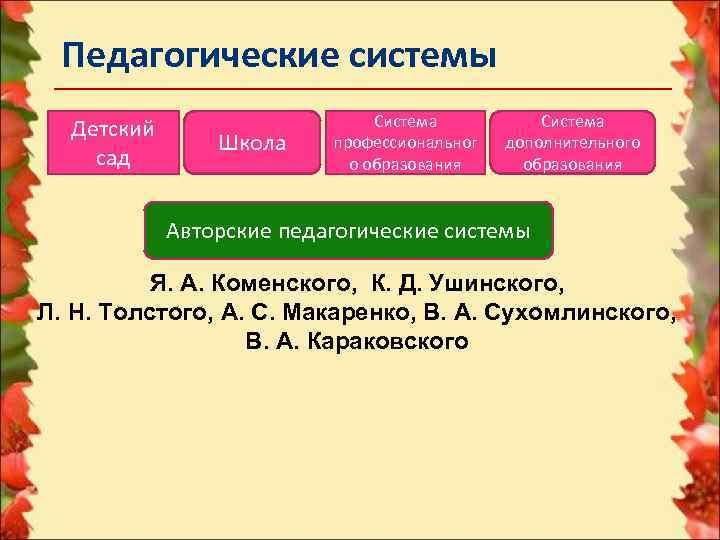 Педагогические системы       Система  Детский