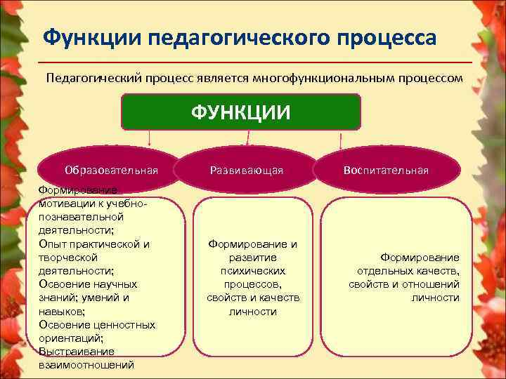Функции педагогического процесса Педагогический процесс является многофункциональным процессом     ФУНКЦИИ Образовательная