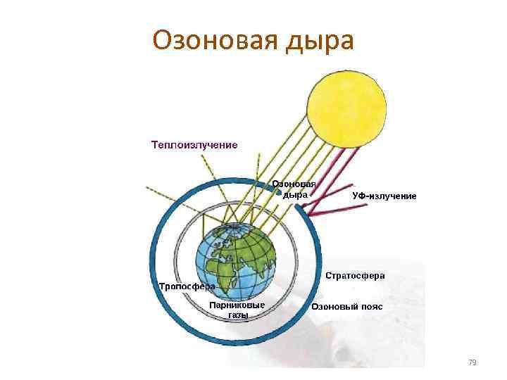 Озоновая дыра     79