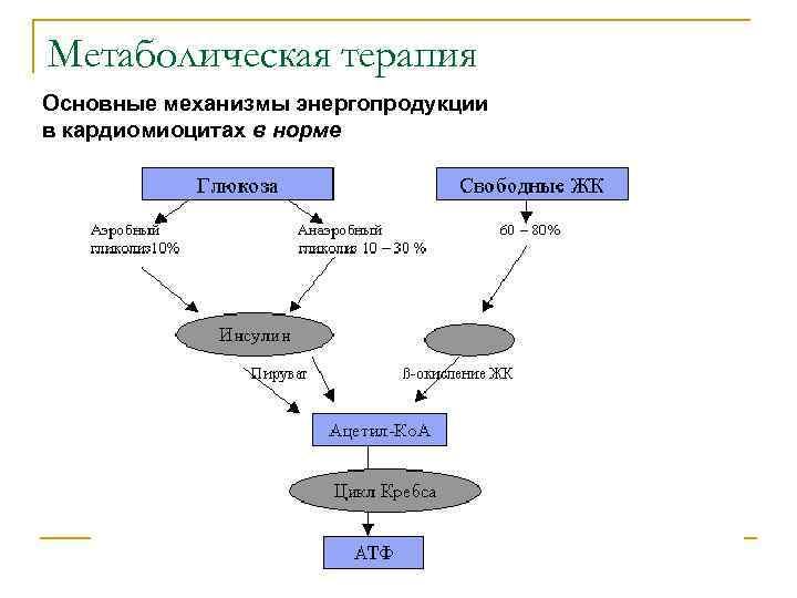 Метаболическая терапия Основные механизмы энергопродукции в кардиомиоцитах в норме