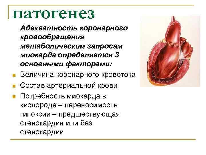 патогенез Адекватность коронарного кровообращения метаболическим запросам миокарда определяется 3 основными факторами: n  Величина