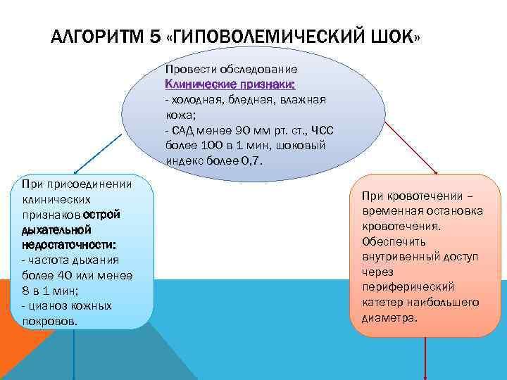 АЛГОРИТМ 5 «ГИПОВОЛЕМИЧЕСКИЙ ШОК»    Провести обследование