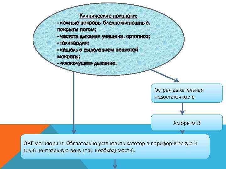 Клинические признаки:   - кожные покровы бледно-синюшные,
