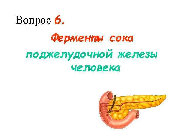 Вопрос 6.  Ферменты сока поджелудочной железы   человека