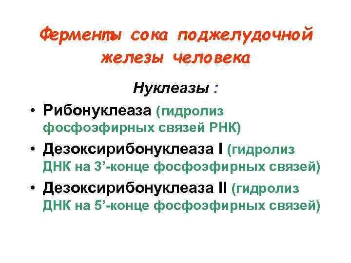 Ферменты сока поджелудочной  железы человека   Нуклеазы :  • Рибонуклеаза
