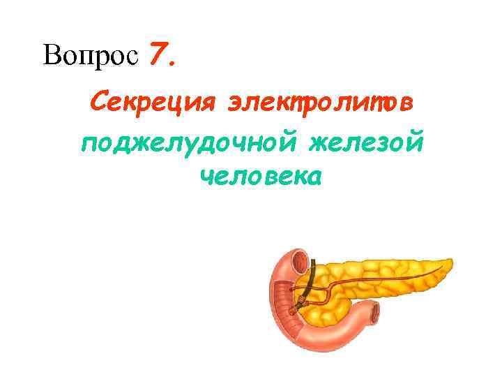 Вопрос 7. Секреция электролитов  поджелудочной железой  человека