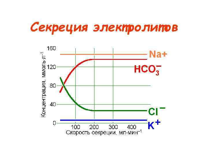Секреция электролитов