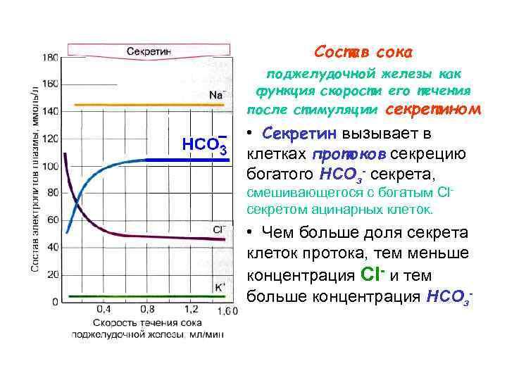 Состав сока  поджелудочной железы как функция скорости его течения после