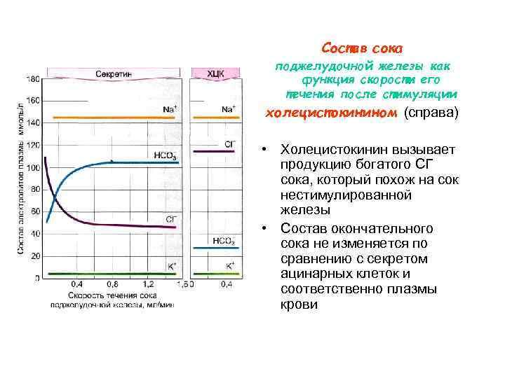 Состав сока поджелудочной железы как функция скорости его  течения после стимуляции