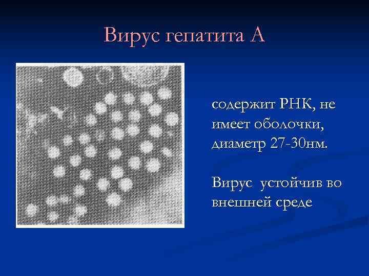Вирус гепатита А -    содержит РНК, не