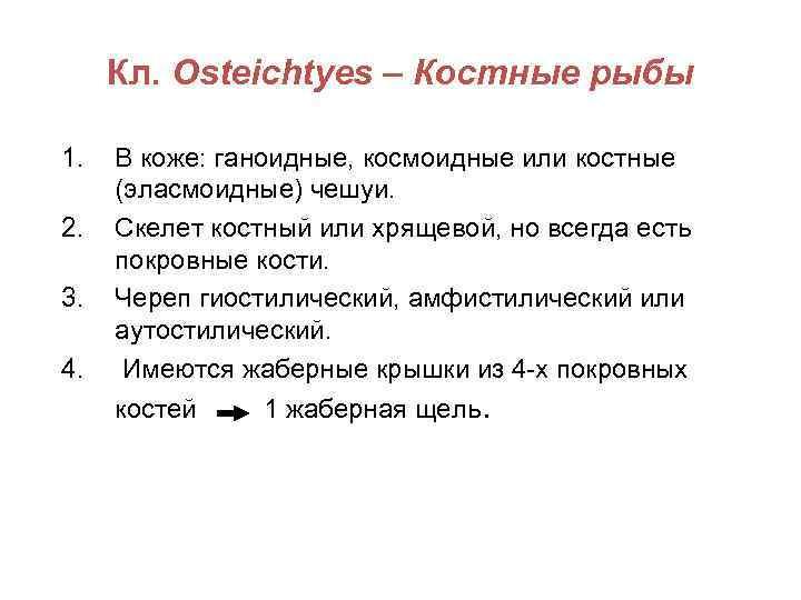 Кл. Osteichtyes – Костные рыбы 1.  В коже: ганоидные, космоидные или костные