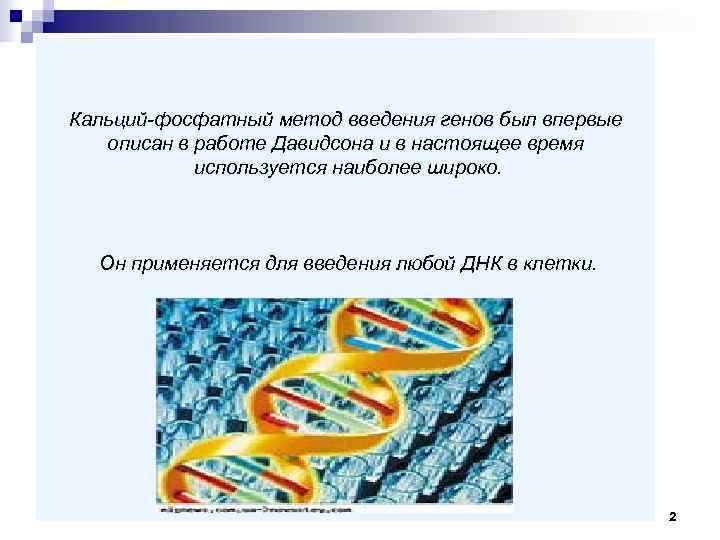 Кальций-фосфатный метод введения генов был впервые  описан в работе Давидсона и в настоящее
