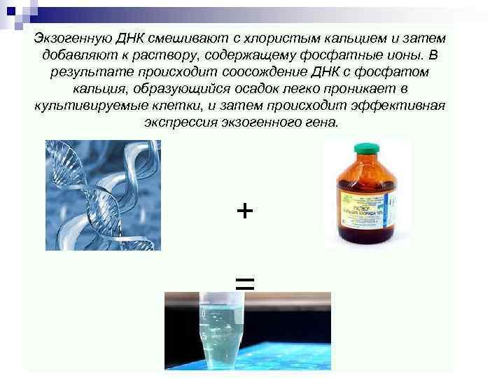 Экзогенную ДНК смешивают с хлористым кальцием и затем добавляют к раствору, содержащему фосфатные ионы.