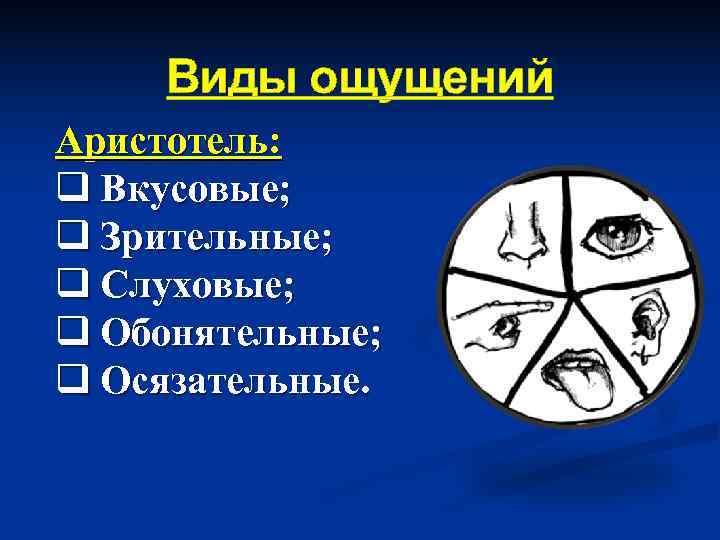 Виды ощущений Аристотель: q Вкусовые; q Зрительные; q Слуховые; q Обонятельные; q Осязательные.