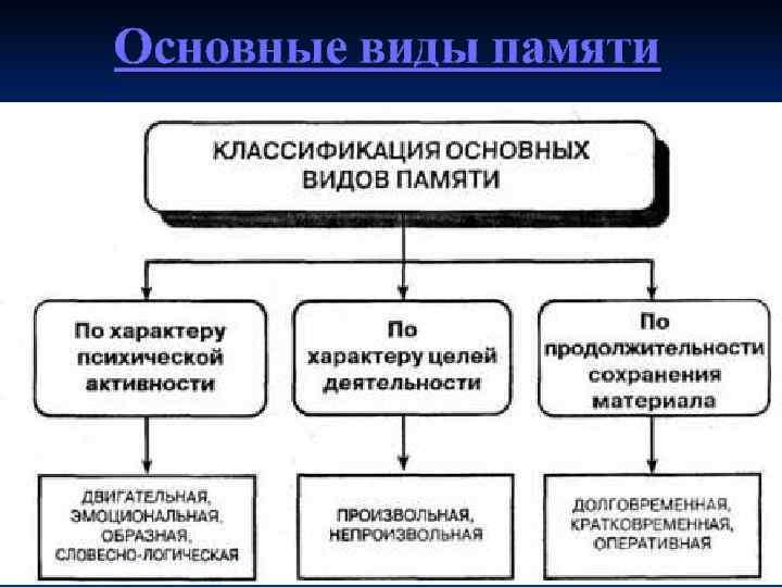 Основные виды памяти