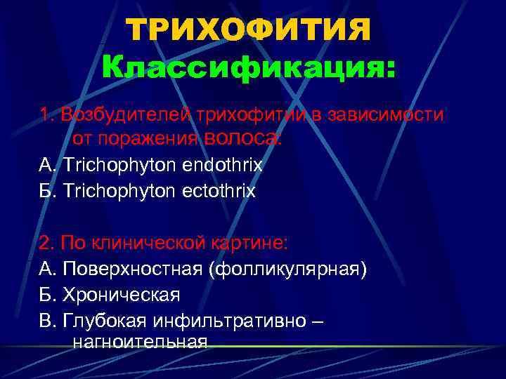 ТРИХОФИТИЯ  Классификация: 1. Возбудителей трихофитии в зависимости от поражения волоса: А.
