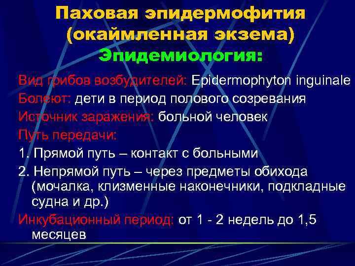 Паховая эпидермофития  (окаймленная экзема)   Эпидемиология: Вид грибов возбудителей: Epidermophyton inguinale