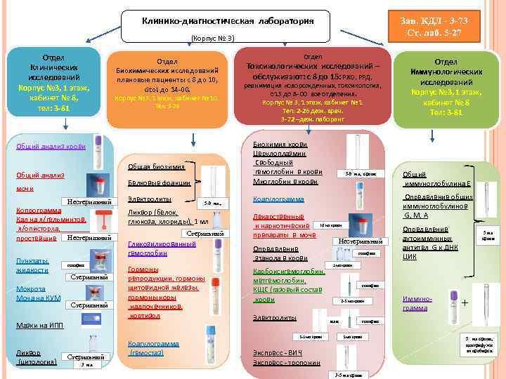 Клинико-диагностическая лаборатория     Зав. КДЛ - 3