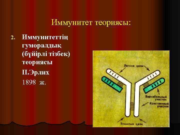 Иммунитет теориясы: 2.  Иммунитеттің гуморалдық (бүйірлі тізбек) теориясы П. Эрлих