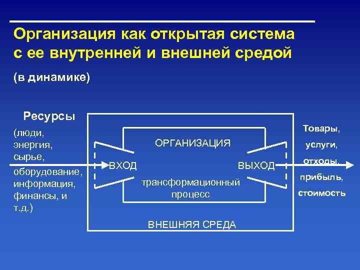 Организация как открытая система с ее внутренней и внешней средой (в динамике)  Ресурсы
