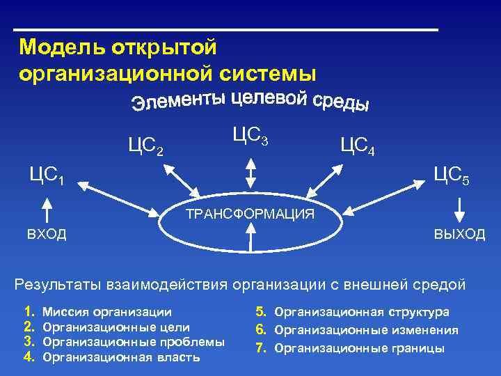 Модель открытой организационной системы      ЦС 3   ЦС