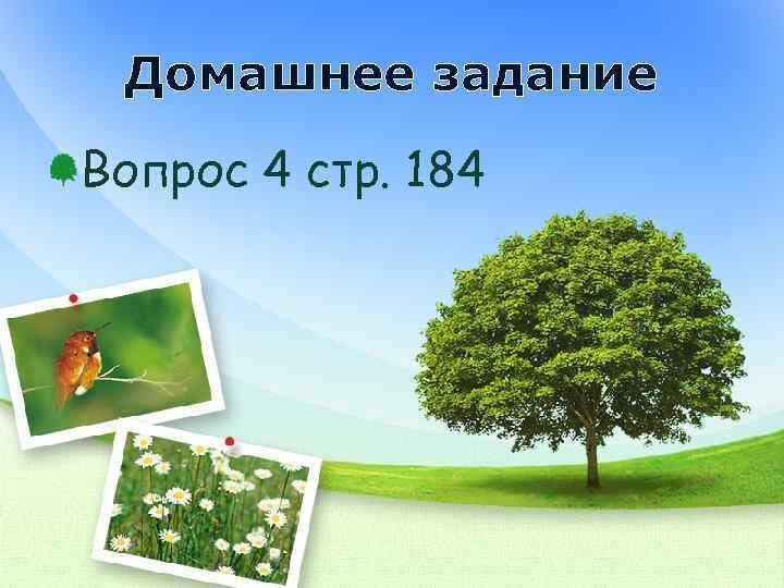 Домашнее задание Вопрос 4 стр. 184