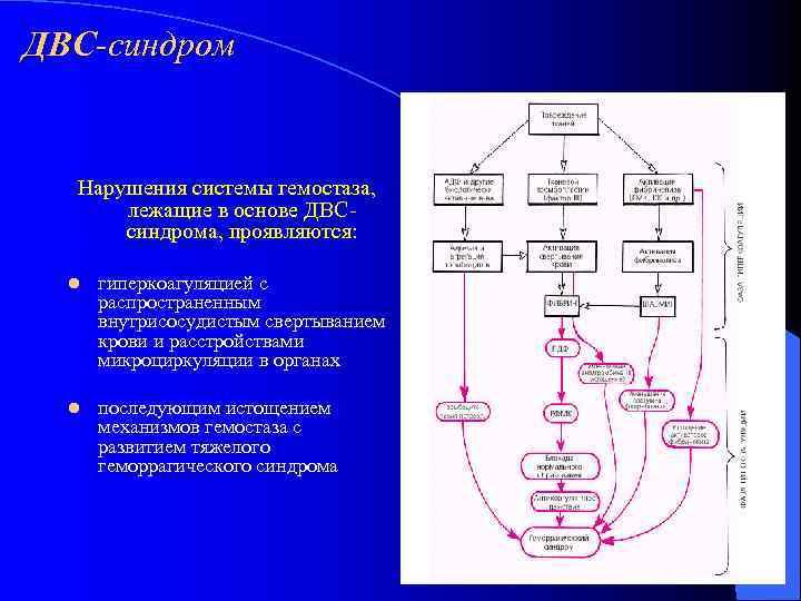 ДВС-синдром Нарушения системы гемостаза,   лежащие в основе ДВС  синдрома, проявляются: l