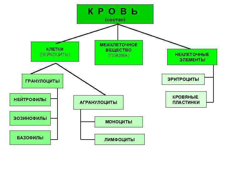 К Р О В Ь     (состав)