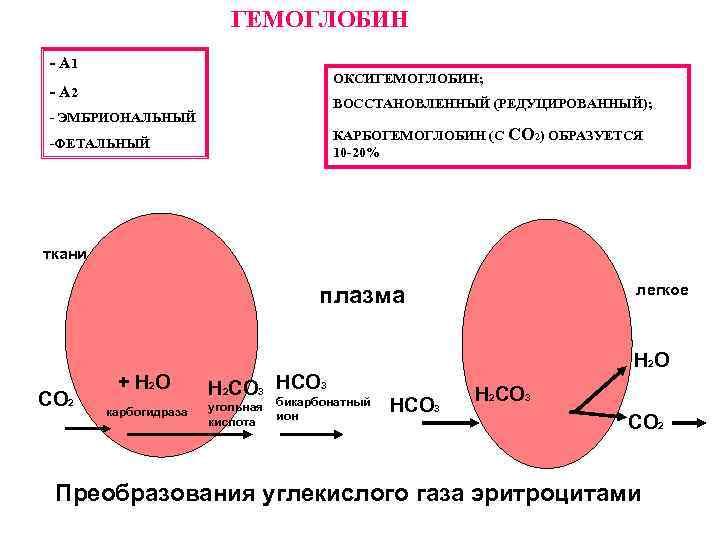ГЕМОГЛОБИН - А 1