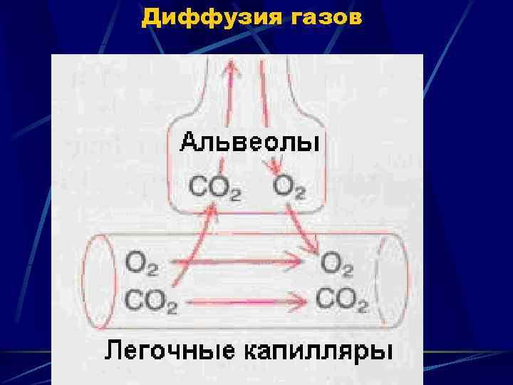 Диффузия газов