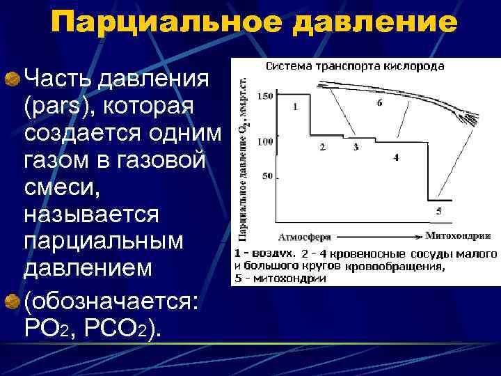 Парциальное давление Часть давления (pars), которая создается одним газом в газовой смеси, называется