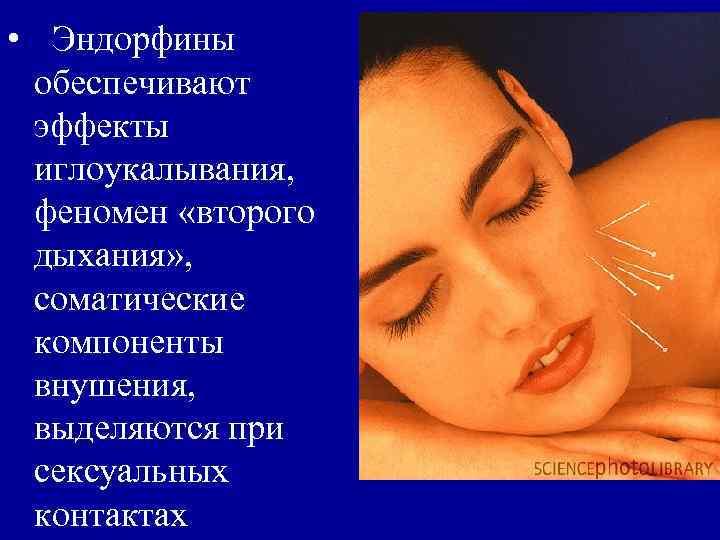 • Эндорфины обеспечивают эффекты иглоукалывания,  феномен «второго дыхания» ,  соматические компоненты