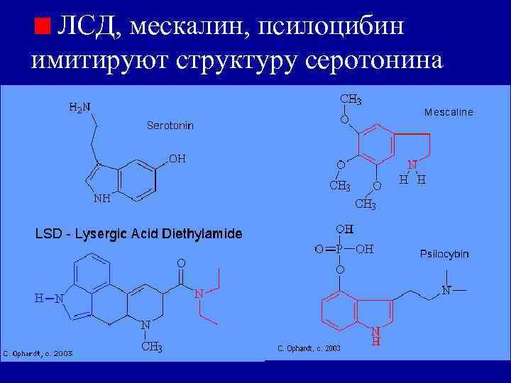 ЛСД, мескалин, псилоцибин имитируют структуру серотонина