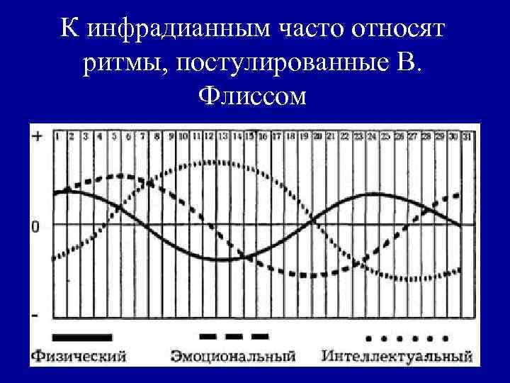 К инфрадианным часто относят  ритмы, постулированные В.   Флиссом