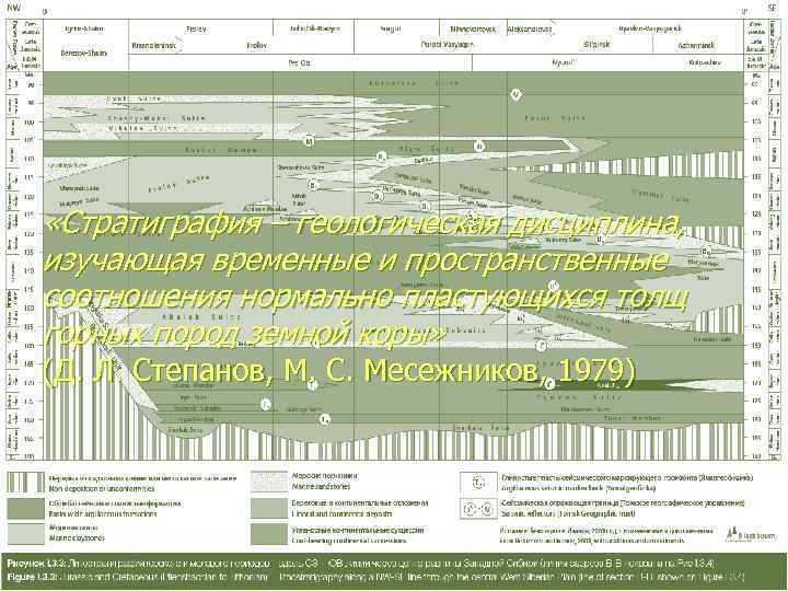 «Стратиграфия – геологическая дисциплина, изучающая временные и пространственные соотношения нормально пластующихся толщ горных